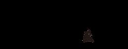 logo-branz-bsd
